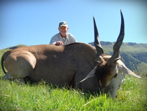 Ron Ragsdale's outstanding East Cape eland bull.